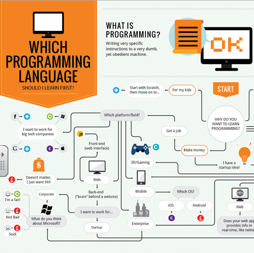 What Programming Language Should You Learn for Web ...